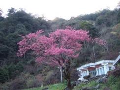 Taiwan 2009 0352
