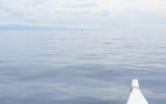 Philippines - Dumaguete June 2013 125