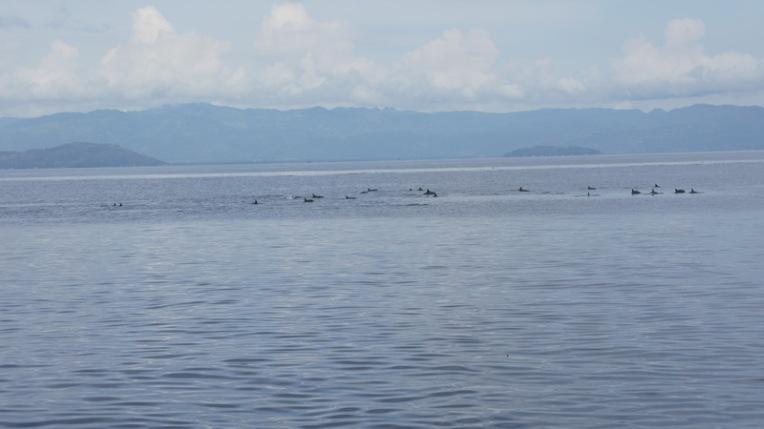 Philippines - Dumaguete June 2013 236