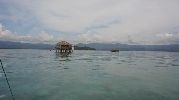 Philippines - Dumaguete June 2013 279