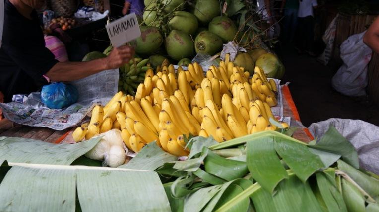 Philippines - Dumaguete June 2013 289