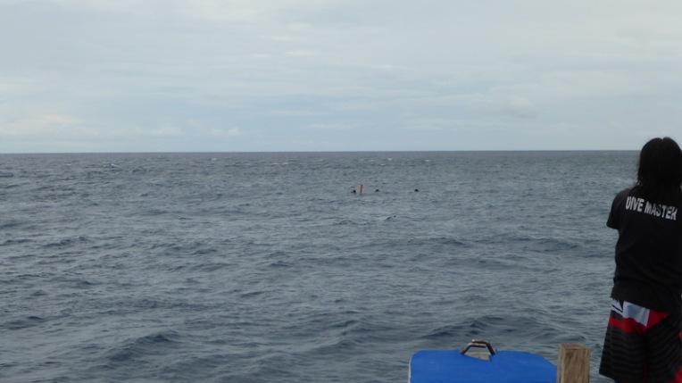 Philippines - Dumaguete June 2013 441