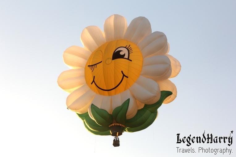 Sunflower-Balloon