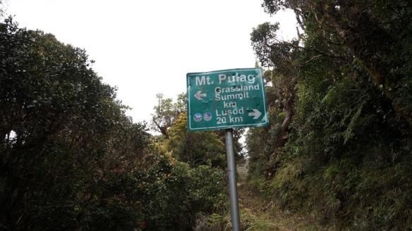 Philippines - Mount Pulag Feb 2014 305