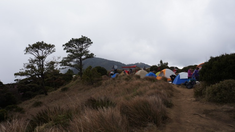 Philippines - Mount Pulag Feb 2014 332