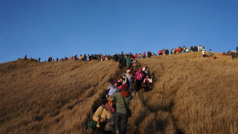 Philippines - Mount Pulag Feb 2014 597