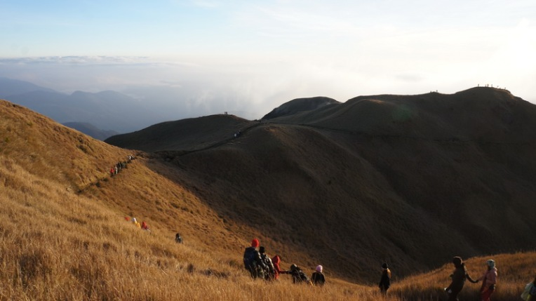 Philippines - Mount Pulag Feb 2014 604