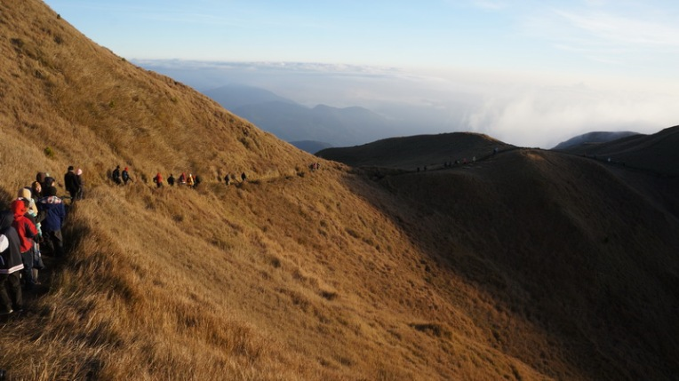 Philippines - Mount Pulag Feb 2014 611