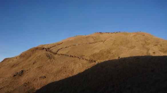 Philippines - Mount Pulag Feb 2014 635