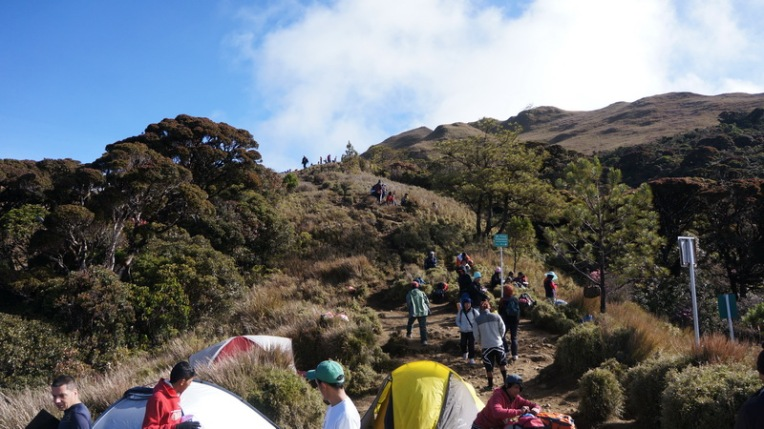 Philippines - Mount Pulag Feb 2014 702