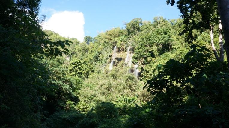 Philippines - Cebu and Bohol - 2014 0127