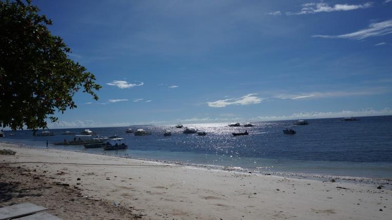 Philippines - Cebu and Bohol - 2014 0467