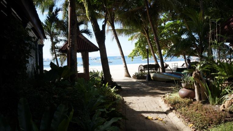 Philippines - Cebu and Bohol - 2014 0484