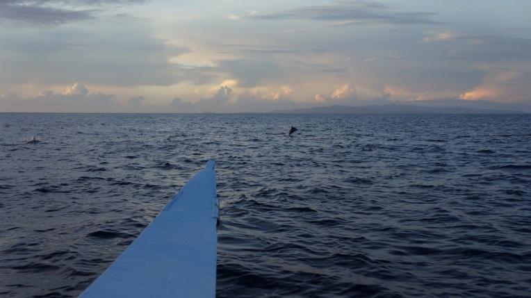 Philippines - Cebu and Bohol - 2014 1048