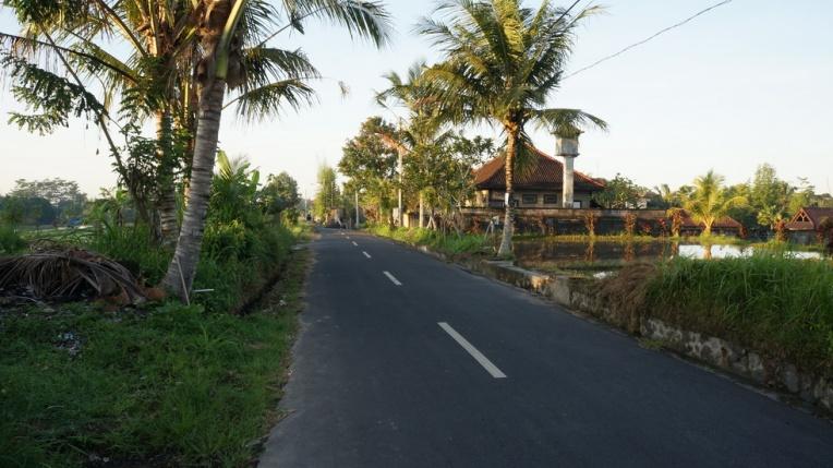 Indonesia - Bali - 18th ~ 20th March 2015 185