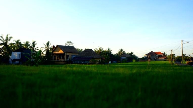 Indonesia - Bali - 18th ~ 20th March 2015 199
