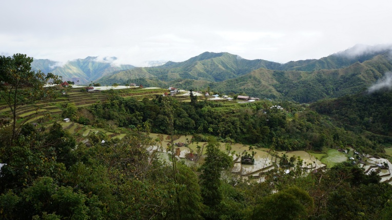 Philippines - Mayoyao, Batad - Feb 2013 - 169