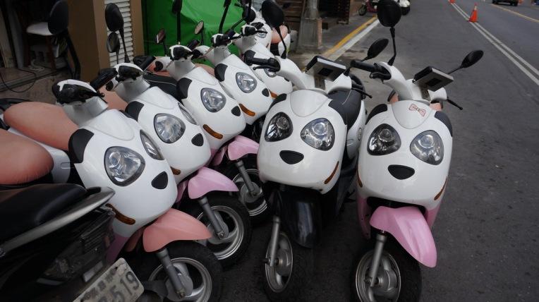 Taiwan - Kaohsiung, Kenting - Feb 2016 - 0329