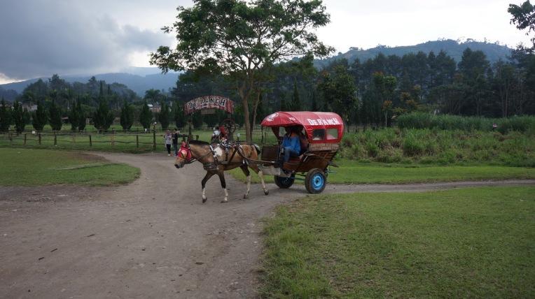 Indonesia - Bandung - 1st June ~ 5th June 2016 425
